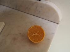 Lemon w/ Star Seeds