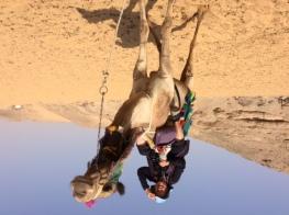 Cordelia on Camel